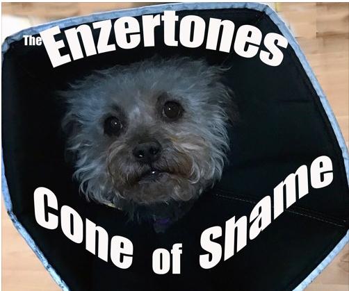 Enzertones, Cone Of Shame