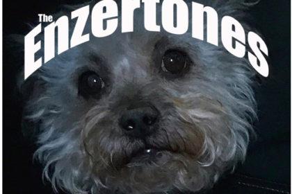 The Enzertones